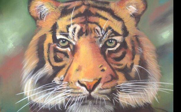 Kreslíme tygra_kurz kresby suchým pastelem - celodenní 10.6.2017
